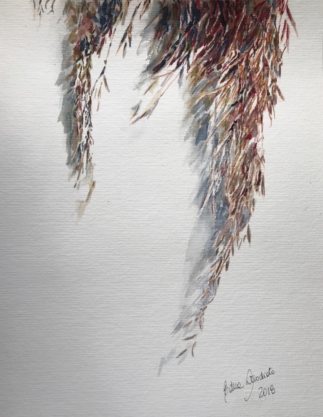 pampas grass 19_watercolor in hahnemuhle 36x48cm 425 gsm_Edna Carla Stradioto 2018_USD 400