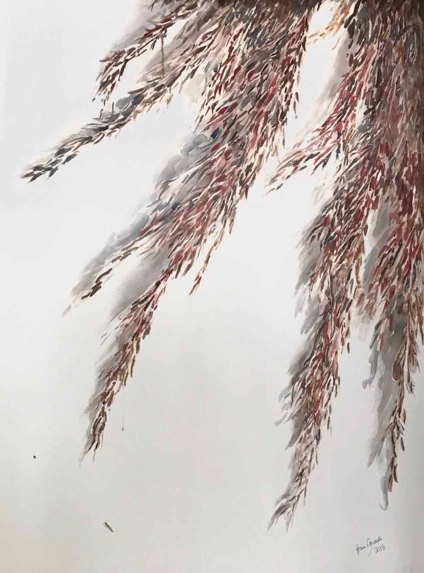 AQUARELA EXPLORADA: Obras de rio-pretenses destacam pela técnica de pintura transparente – Eliara Bevilacqua, Jane Ferrari e Edna Stradioto expõem obras de arte feitas com a técnica de pintura conhecida pela transparência, luminosidade eespontaneidade