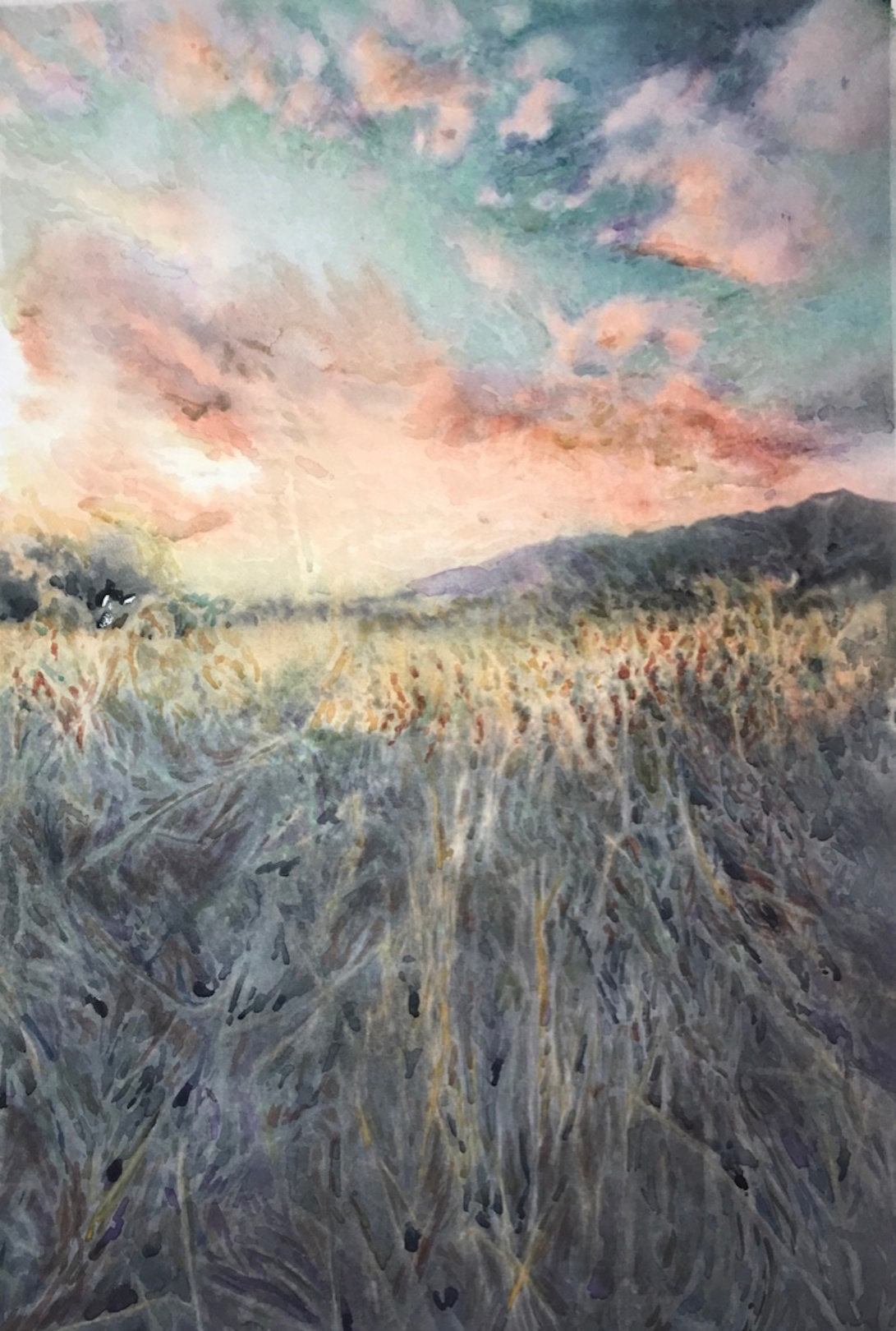 knee height grass_Edna Carla Stradioto_watercolor in hahnemuhle anniversary edition 425gsm 36x48cm_2018