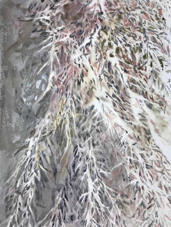pampas grass 28_edna carla stradioto_blickartwatercolorpaper 300gsm 32x42cm