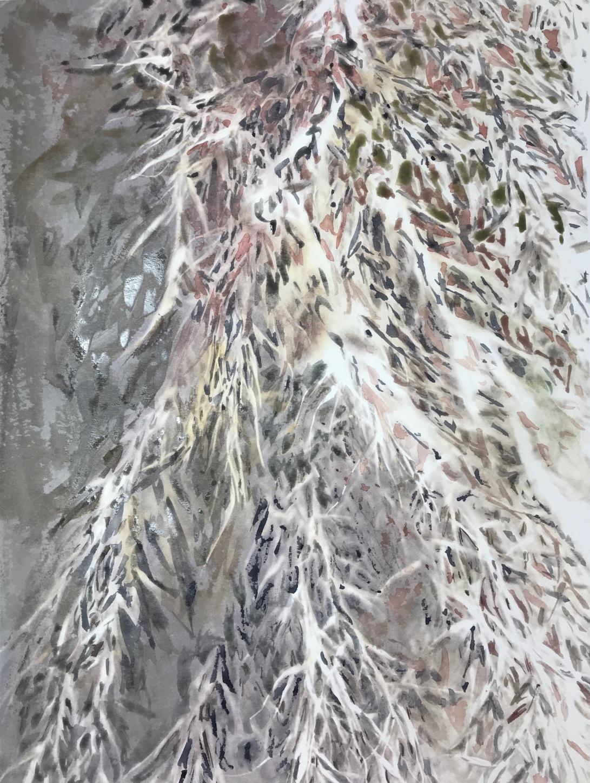 pampas grass 31_watercolor in blickartwatercolor paper 31x41cm 300gsm_Edna Carla Stradioto 2018_USD 300.jpg